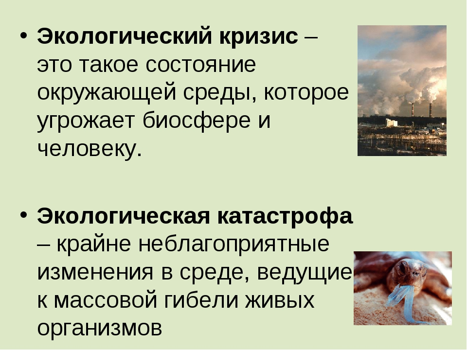 Экологический кризис – это такое состояние окружающей среды, которое угрожает...