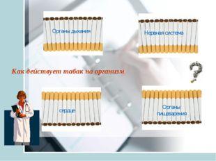 Как действует табак на организм Органы дыхания Нервная система сердце Органы
