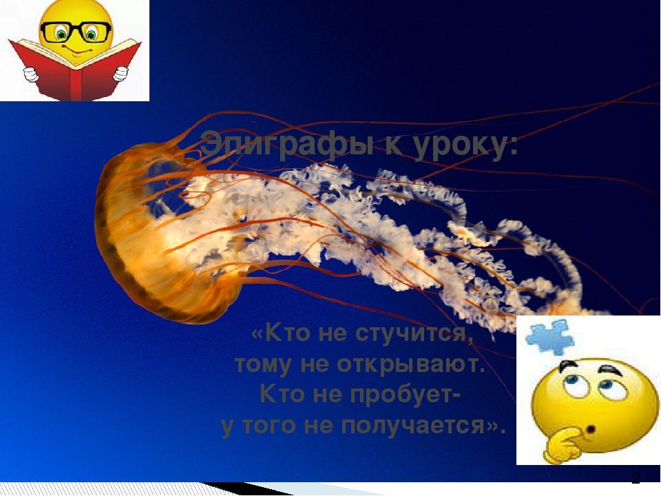 Эпиграфы к уроку: «Кто не стучится, тому не открывают. Кто не пробует- у того...