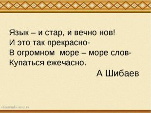Язык – и стар, и вечно нов! И это так прекрасно- В огромном море – море слов