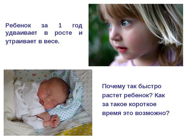 Ребенок за 1 год удваивает в росте и утраивает в весе. Почему так быстро раст...