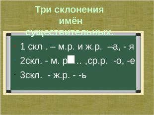 Три склонения имён существительных. 1 скл . – м.р. и ж.р. –а, - я 2скл. - м.