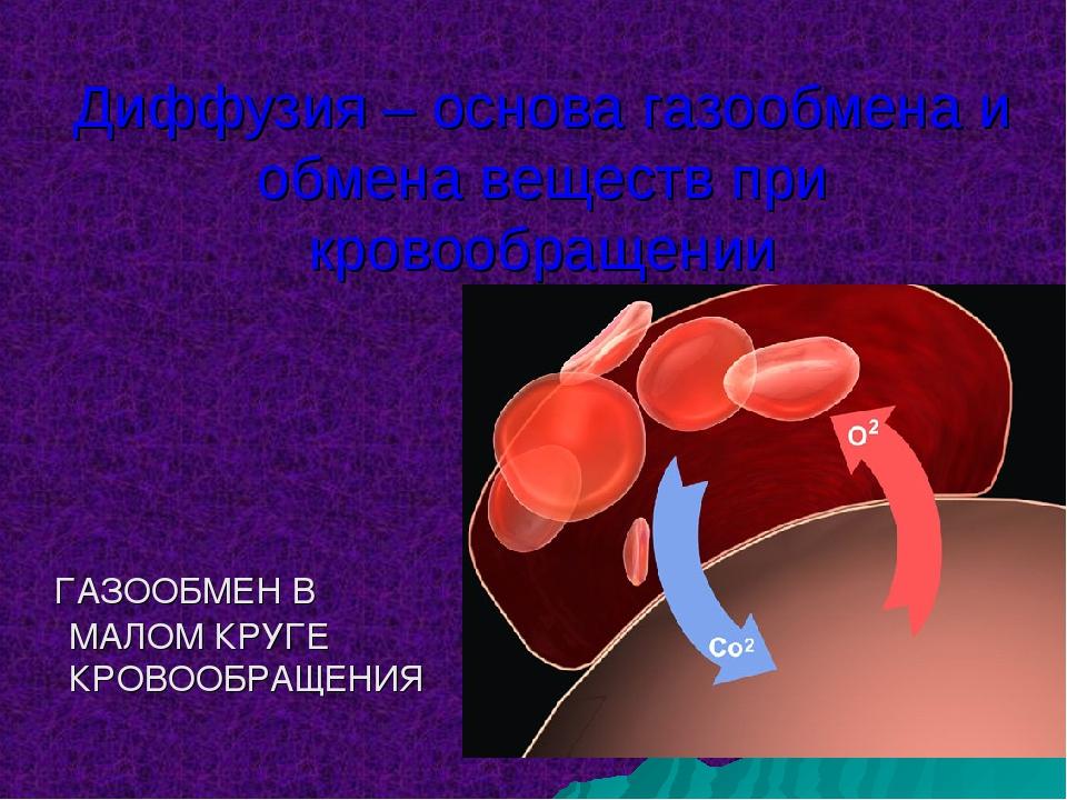 Диффузия – основа газообмена и обмена веществ при кровообращении ГАЗООБМЕН В...