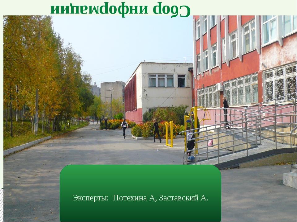 Сбор информации Эксперты: Потехина А, Заставский А.