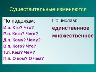 Существительные изменяются По падежам: И.п. Кто? Что? Р.п. Кого? Чего? Д.п. К