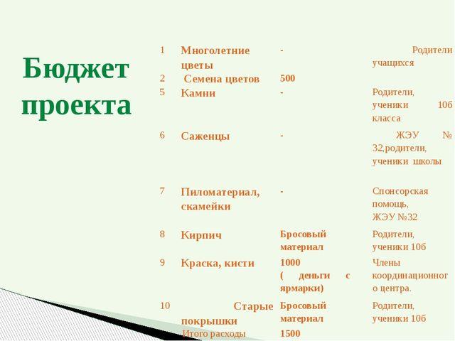 Бюджет проекта № п/п Наименование Стоимость ( в рублях) Исполнитель 1 Многоле...
