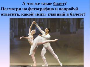 А что же такое балет? Посмотри на фотографию и попробуй ответить, какой «кит»
