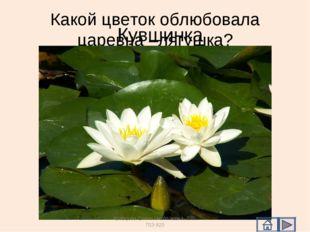 Какой цветок облюбовала царевна –лягушка? Кувшинка Кравцова Елена Николаевна,