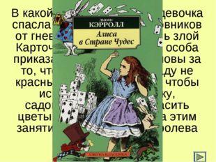 В какой сказке маленькая девочка спасла незадачливых садовников от гнева их х