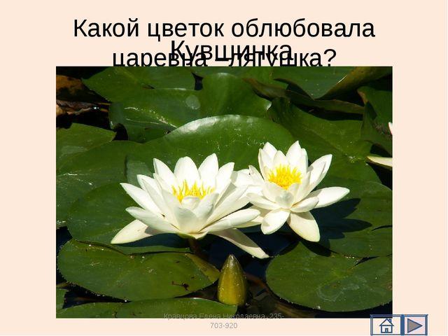 Какой цветок облюбовала царевна –лягушка? Кувшинка Кравцова Елена Николаевна,...