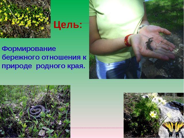 Цель: Формирование бережного отношения к природе родного края.
