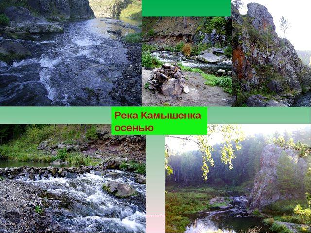 Река Камышенка осенью