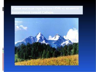 Самая высокая гора Белуха (4506 м) является высочайшей точкой Сибири.