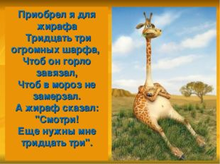 Приобрел я для жирафа Тридцать три огромных шарфа, Чтоб он горло завязал, Ч