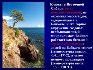 Климат в Восточной Сибири резко континентальный, но огромная масса воды, сод