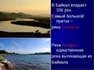 В Байкал впадает 336 рек. Самый большой приток – река Селенга. Река Ангара -