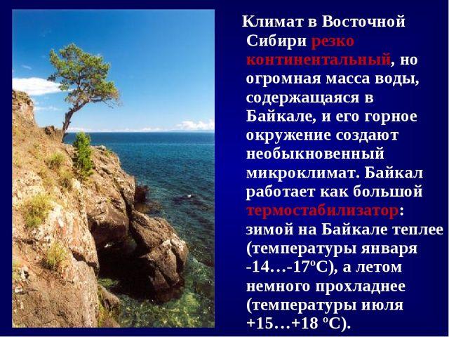 Климат в Восточной Сибири резко континентальный, но огромная масса воды, сод...