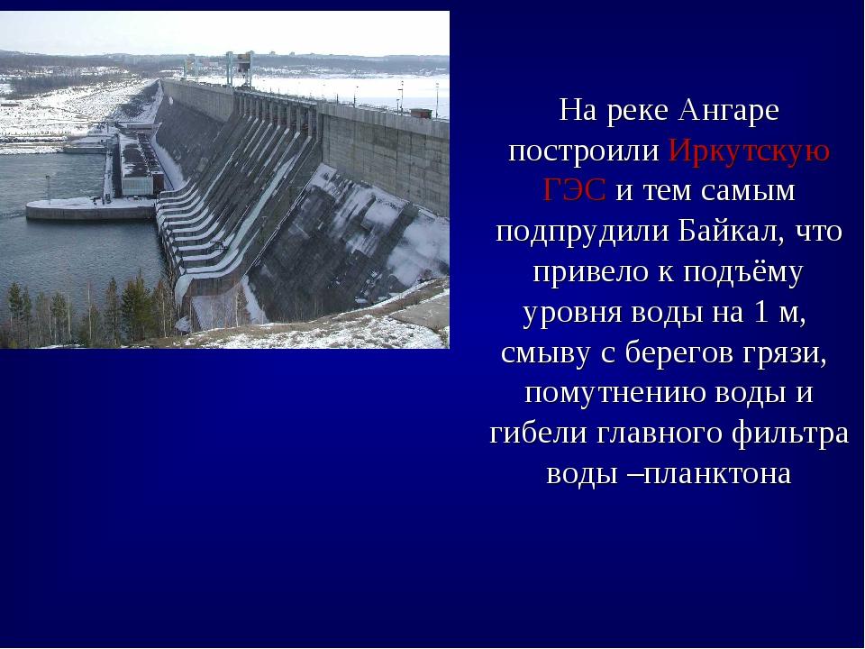 На реке Ангаре построили Иркутскую ГЭС и тем самым подпрудили Байкал, что при...