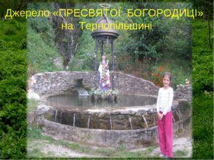 Джерело «ПРЕСВЯТОЇ БОГОРОДИЦІ» на Тернопільшині