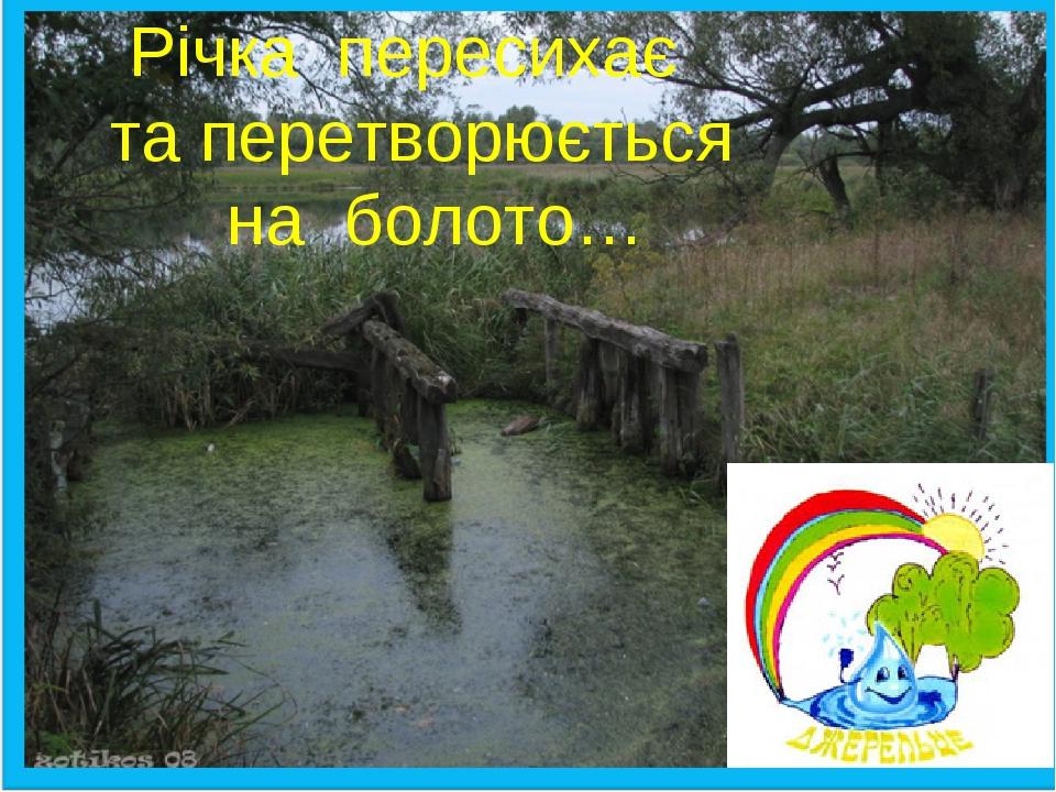 аба Річка пересихає та перетворюється на болото…
