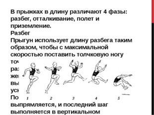 В прыжках в длину различают 4 фазы: разбег, отталкивание, полет и приземление