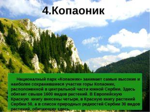 Националный парк «Копаоник» занимает самые высокие и наиболее сохранившиеся