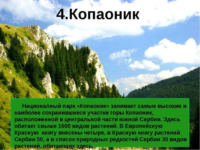 Националный парк «Копаоник» занимает самые высокие и наиболее сохранившиеся...