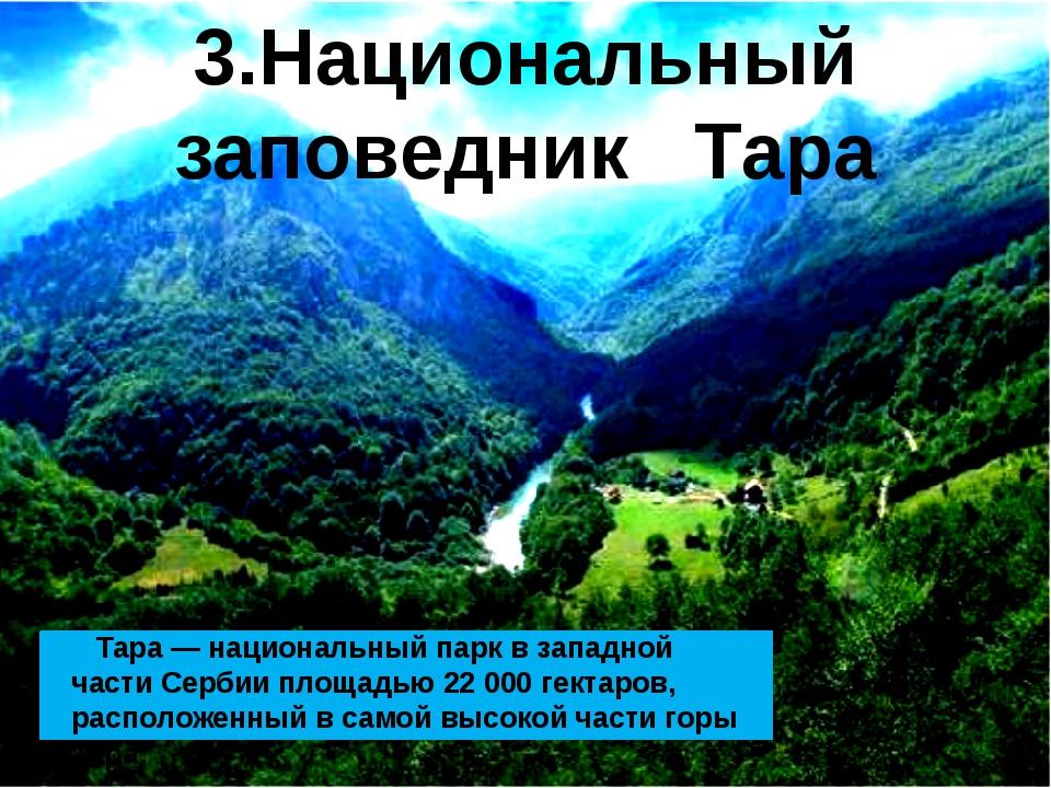 Тара—национальный паркв западной части Сербииплощадью 22000гектаров, р...