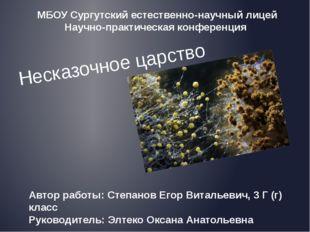 Несказочное царство Автор работы: Степанов Егор Витальевич, 3 Г (г) класс Рук