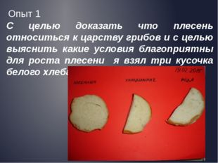 С целью доказать что плесень относиться к царству грибов и с целью выяснить к