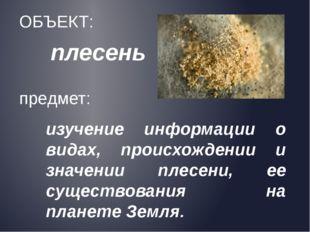плесень ОБЪЕКТ: предмет: изучение информации о видах, происхождении и значени