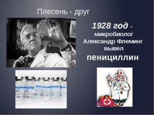 Плесень - друг 1928 год - микробиолог Александр Флеминг вывел пенициллин