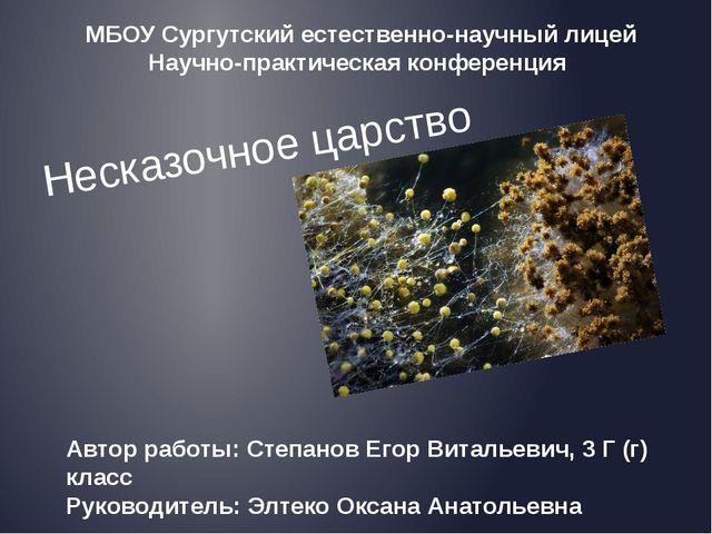 Несказочное царство Автор работы: Степанов Егор Витальевич, 3 Г (г) класс Рук...