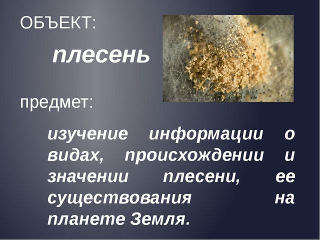 плесень ОБЪЕКТ: предмет: изучение информации о видах, происхождении и значени...