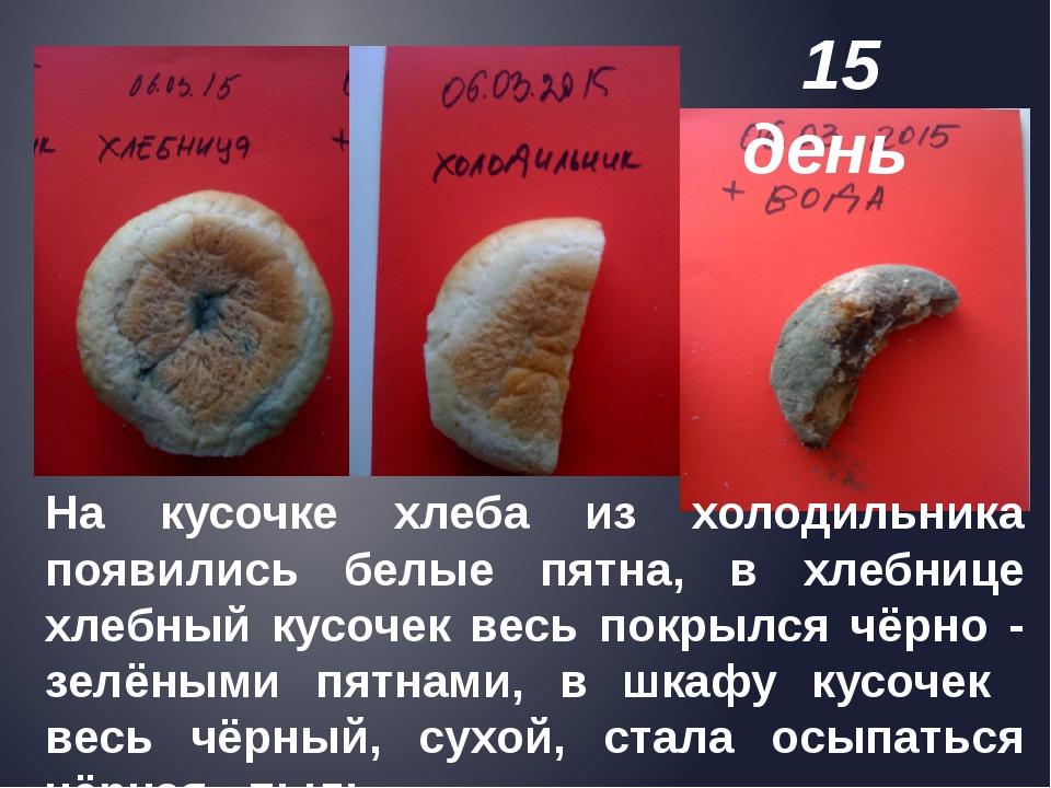 На кусочке хлеба из холодильника появились белые пятна, в хлебнице хлебный к...