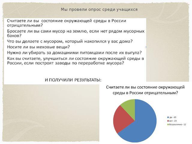 Мы провели опрос среди учащихся