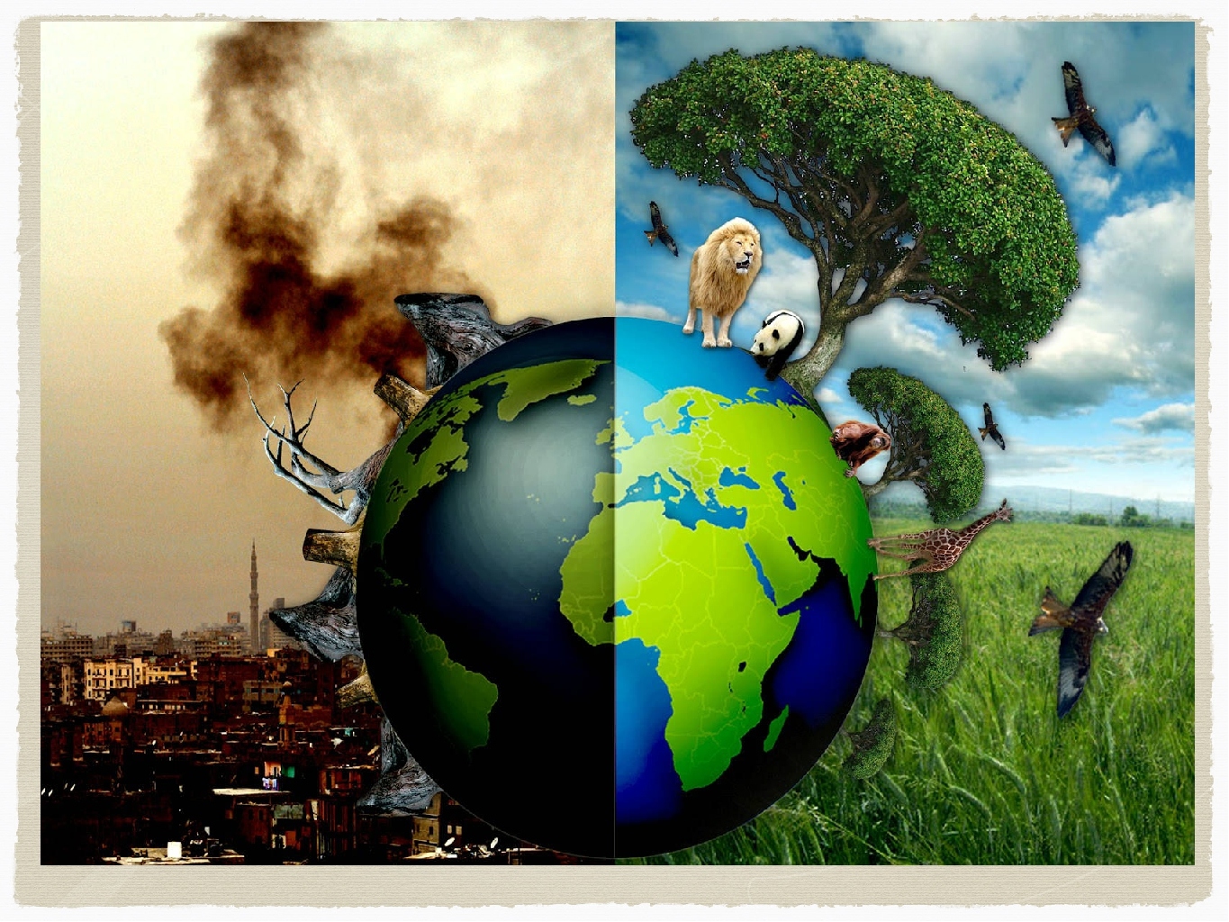role of print media in environmental awareness