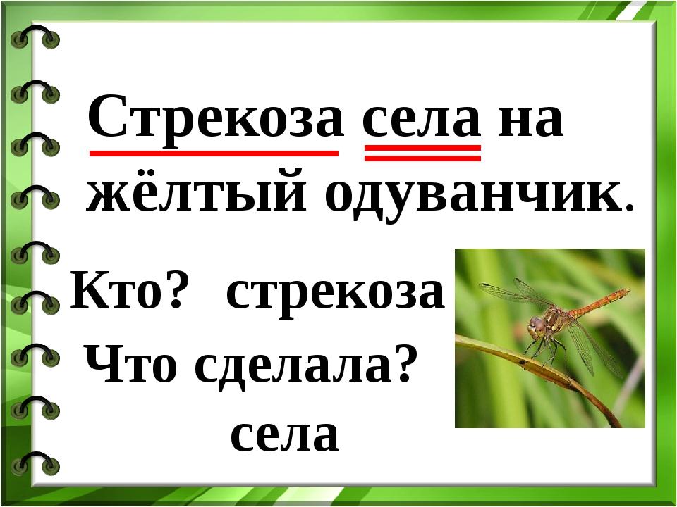 Стрекоза села на жёлтый одуванчик. стрекоза села Кто? Что сделала?