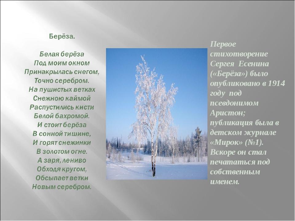 Первое стихотворение Сергея Есенина («Берёза») было опубликовано в 1914 году...