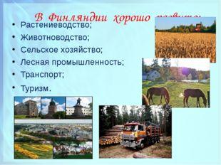 В Финляндии хорошо развито: Растениеводство; Животноводство; Сельское хозяйс