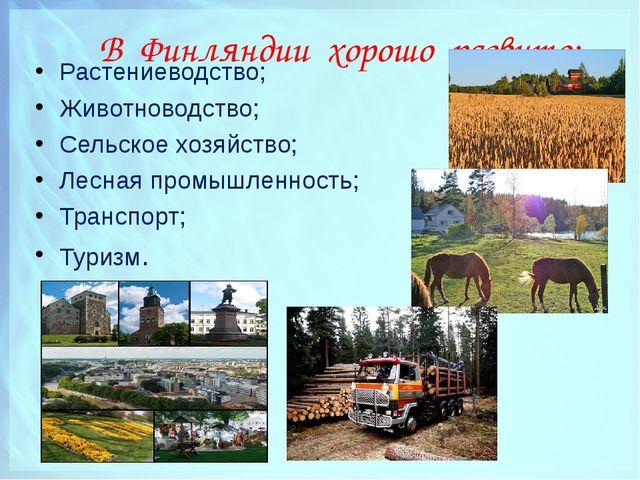 В Финляндии хорошо развито: Растениеводство; Животноводство; Сельское хозяйс...