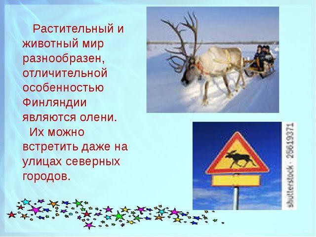 Растительный и животный мир разнообразен, отличительной особенностью Финлянд...