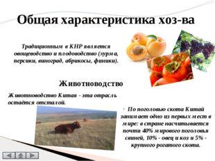 На Западе страны преобладает кочевое, полукочевое и экстенсивное скотоводств