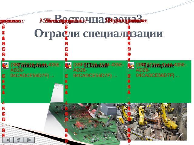Включает девять провинций и автономных районов. Общий экономический профиль э...