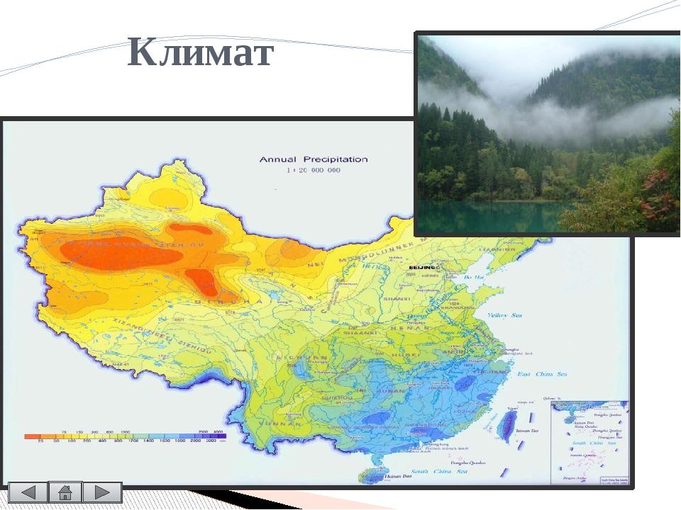 Экологические проблемы Бурное и стремительное развитие Китая, наносит огромны...