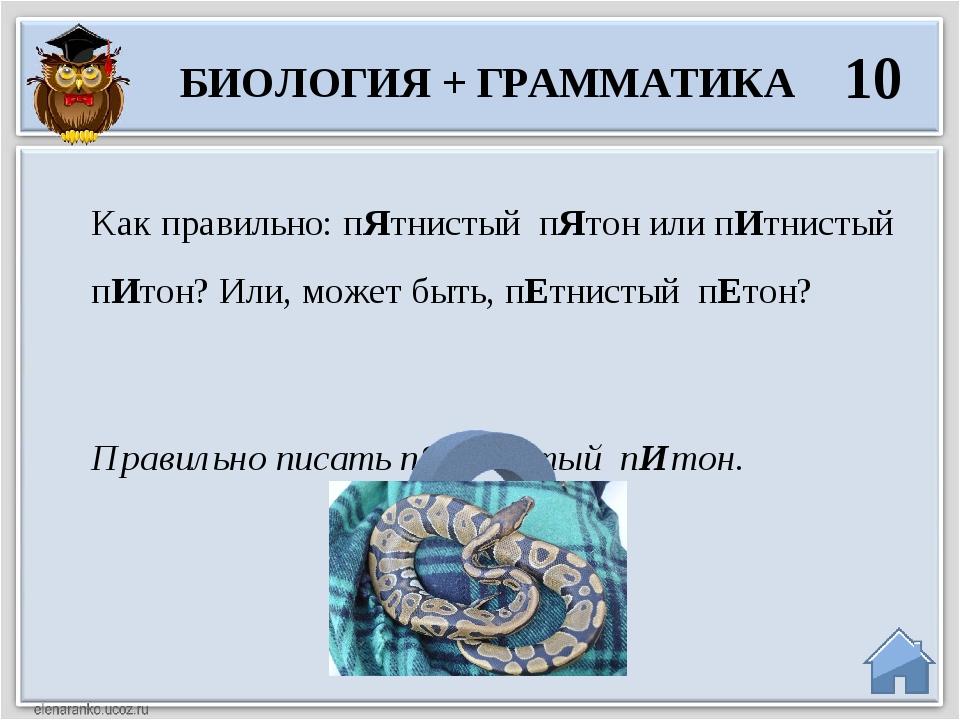 Растительное царство 10 Нет. Цветка папоротника не существует. В России в ноч...