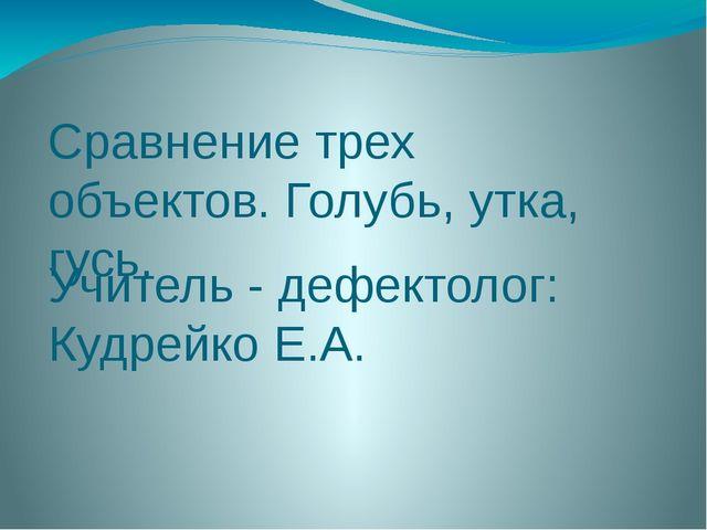 Сравнение трех объектов. Голубь, утка, гусь. Учитель - дефектолог: Кудрейко Е...
