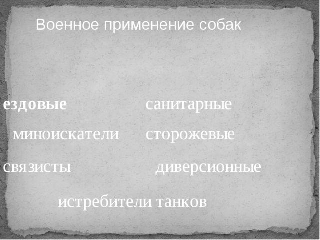 Военное применение собак ездовые миноискатели связисты истребители танков сан...