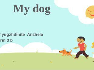 My dog Shyugzhdinite Anzhela form 3 b