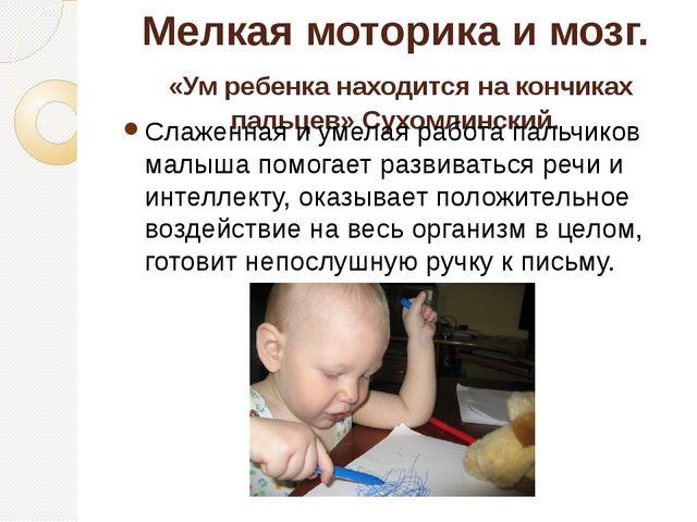Мелкая моторика и мозг. «Ум ребенка находится на кончиках пальцев» Сухомлинск...